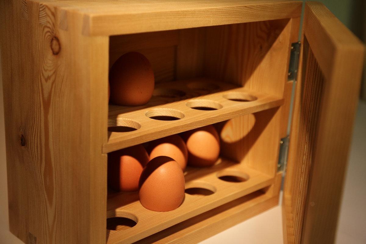 Blick in den Eierkasten